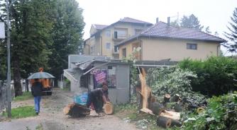 Vjetar srušio stablo na kiosk u Banjaluci