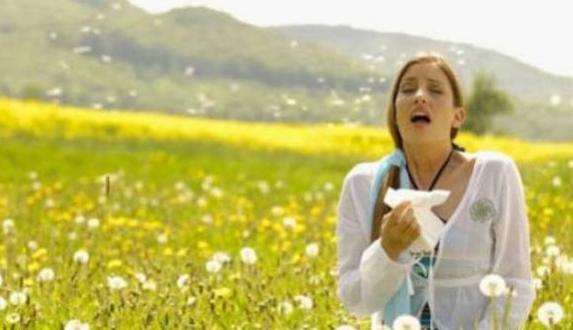 Visoka koncentracija polena trave
