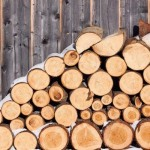 drva-pilim-tracnom-pilom-83343-735x400
