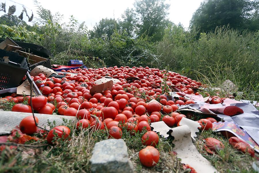 paradajz 3