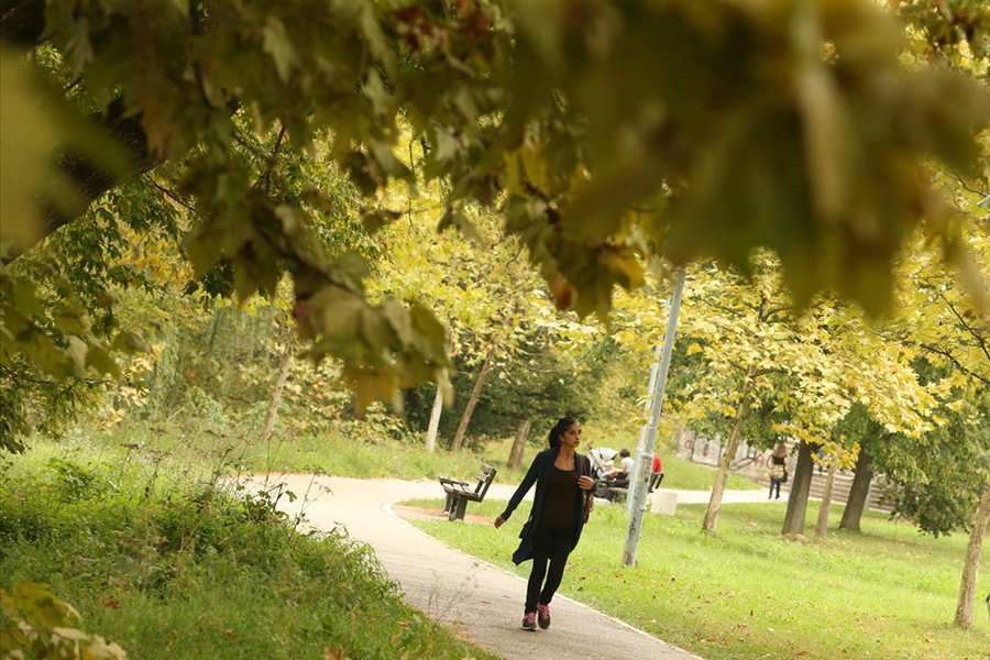 jesen 5