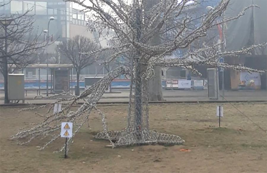 drvo-ukras-nova-godina